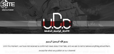 UCCStatement2