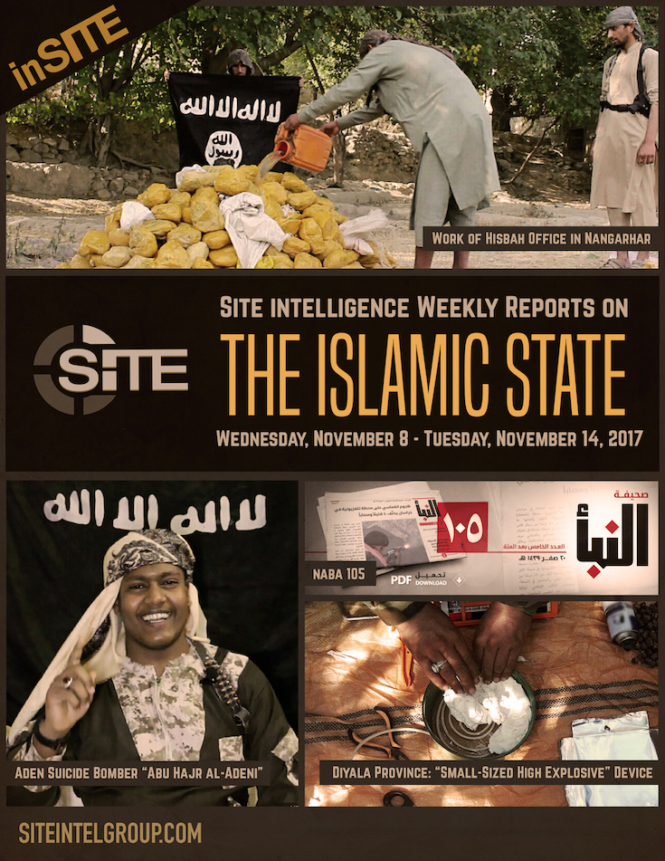 Weekly inSITE on the Islamic State, November 8-14