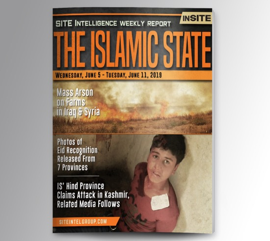 Weekly inSITE on the Islamic State for June 5-11, 2019