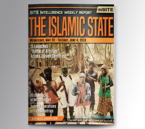 Weekly inSITE on the Islamic State for May 29-June 4, 2019