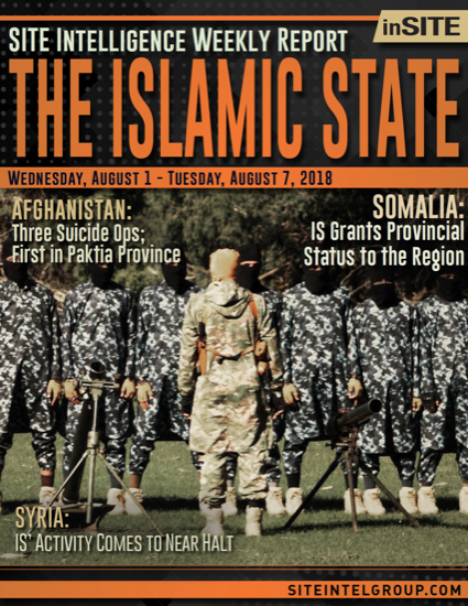 Weekly inSITE on the Islamic State for August 1-7, 2018