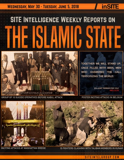 Weekly inSITE on the Islamic State for May 30-June 5, 2018