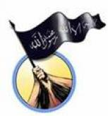 The Mujahideen Shura Council Claims Responsibility for Downing Two American Aircraft in al-Radwaniya
