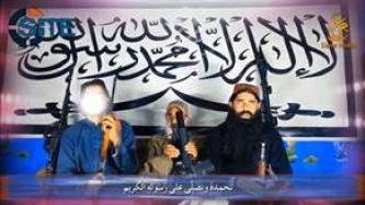 TTP Official Denies Pakistani Claims of Uprooting Fighters in Tribal Region, Seizing Control