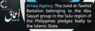 IS-Linked 'Amaq News Reports Philippines-Based Battalion Pledged to IS