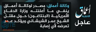 IS-Linked 'Amaq Denies U.S. Defense Department Claim of Shishani Death