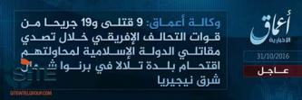 'Amaq Reports 9 Killed, 19 Wounded in IS Attack in Nigeria's Borno State