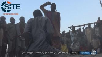 IS' West Africa Province Claims Killing 8 African Coalition Forces, Shows Shariah Implementation in Lake Chad Area