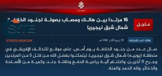 IS' West Africa Province Claims Attack on African Coalition Troops in Nigeria's Yobe State