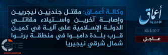 IS' 'Amaq Reports Killing Two Nigerian Soldiers in Borno