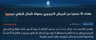 IS' West Africa Province Claims Killing 12 Nigerian Soldiers in Attack in Yobe