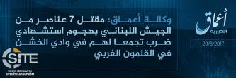 'Amaq Reports 7 Lebanese Soldiers Killed in IS Suicide Bombing in Western Qalamoun