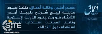 "'Amaq Reports Belgium Attacker a ""Soldier of the Islamic State"""
