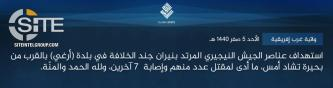 IS' West Africa Province Claims Attack on Nigerian Soldiers in Arege