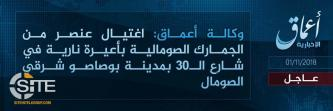 IS' 'Amaq Reports Killing of Somali Customs Officer in Puntland