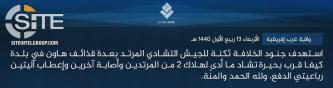 IS' West Africa Province Claims Killing 2 Chadian Soldiers in Mortar Strike Near Lake Chad