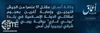 'Amaq Reports 17 Nigerian Soldiers Killed in IS Attack in Buni Gari