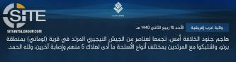 IS' West Africa Province Claims Killing 5 Nigerian Soldiers in Clash Near Dikwa
