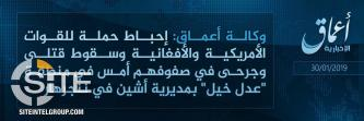 'Amaq Reports IS Fighters Thwarting U.S.-Afghan Offensive in Nangarhar, Inflicting Losses in Enemy Ranks