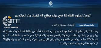 IS' West Africa Province Claims Killing 42 in Ambush on Borno Governor's Convoy