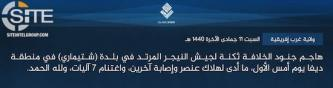 IS' West Africa Province Claims Attacks in Niger and Nigeria