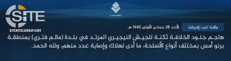 IS' West Africa Province Claims Multiple Casualties in Attack on Nigerian Soldiers in Malam Fatori