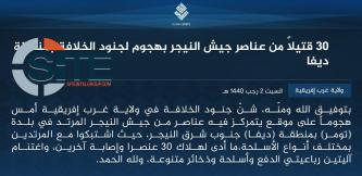 IS' West Africa Province Claims Killing 30 in Diffa Region of Niger, Small-Scale Attacks in Nigeria