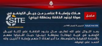 IS Announces Central Africa Province, Claims 8 Total Casualties from Congolese Army