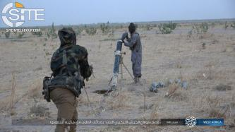 IS' West Africa Province Claims 23 Nigerian Soldiers Killed in Suicide Bombing and Clash, Bombing MJTF in Niger