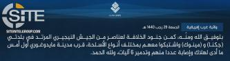IS' West Africa Province Claims Ambush on Nigerian Soldiers Near Maiduguri, Inflicting Multiple Casualties
