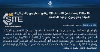 IS' West Africa Province Claims 16 Casualties Total Among MJTF Troops and Nigerian Soldiers in Niger and Nigeria