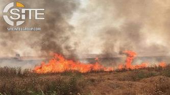 IS Claims Burning Over 170 Hectares of Farmland of Shi'ites, Yarsanis, and Yazidis in Northern Iraq