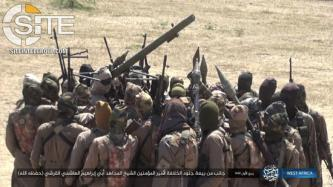 ISWAP Claims Killing at Least 20 in Counter-Offensive in Borno, Reports Attack in Diffa