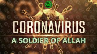 "Despite Cautioning Against COVID-19, IS Supporters Describe Virus as ""Soldier of Allah"""