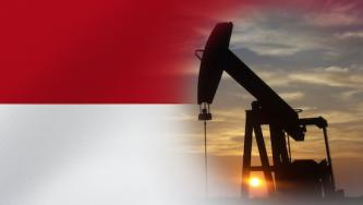 Indonesian IS Supporter Calls to Target Oil Companies Operating in Indonesia