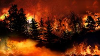 Celebrating Wildfires, IS Supporters Reference Official Instruction to Commit Arson