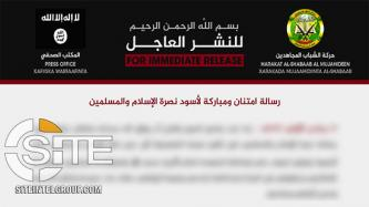 Shabaab Lauds JNIM for Recent Operations Against French Forces in Mali, Urges Other Jihadi Groups Follow Example