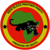 White Supremacists Angered by New Black Panthers Party's Trip to South Africa