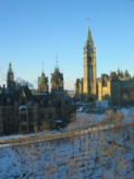 Continued Reactions to the Attacks in Ottawa